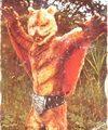 仮面ライダーカード 20番 空とぶ怪人ムササビドール 旧ゴシック版 裏25局
